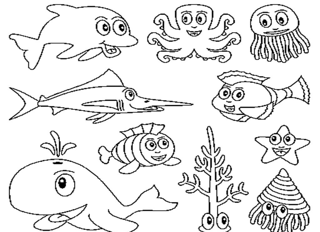 1024x742 Ocean Animal Drawings Preschool In Funny Coloring Printable