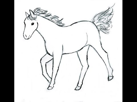 480x360 Coloring Pages Horse Drawing For Kids Hqdefault Coloring Pages