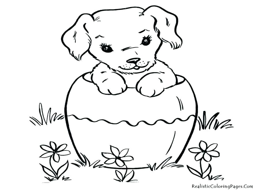 878x659 Simple Cat And Dog Coloring Pages Print Cats Dogs Sheets Kids