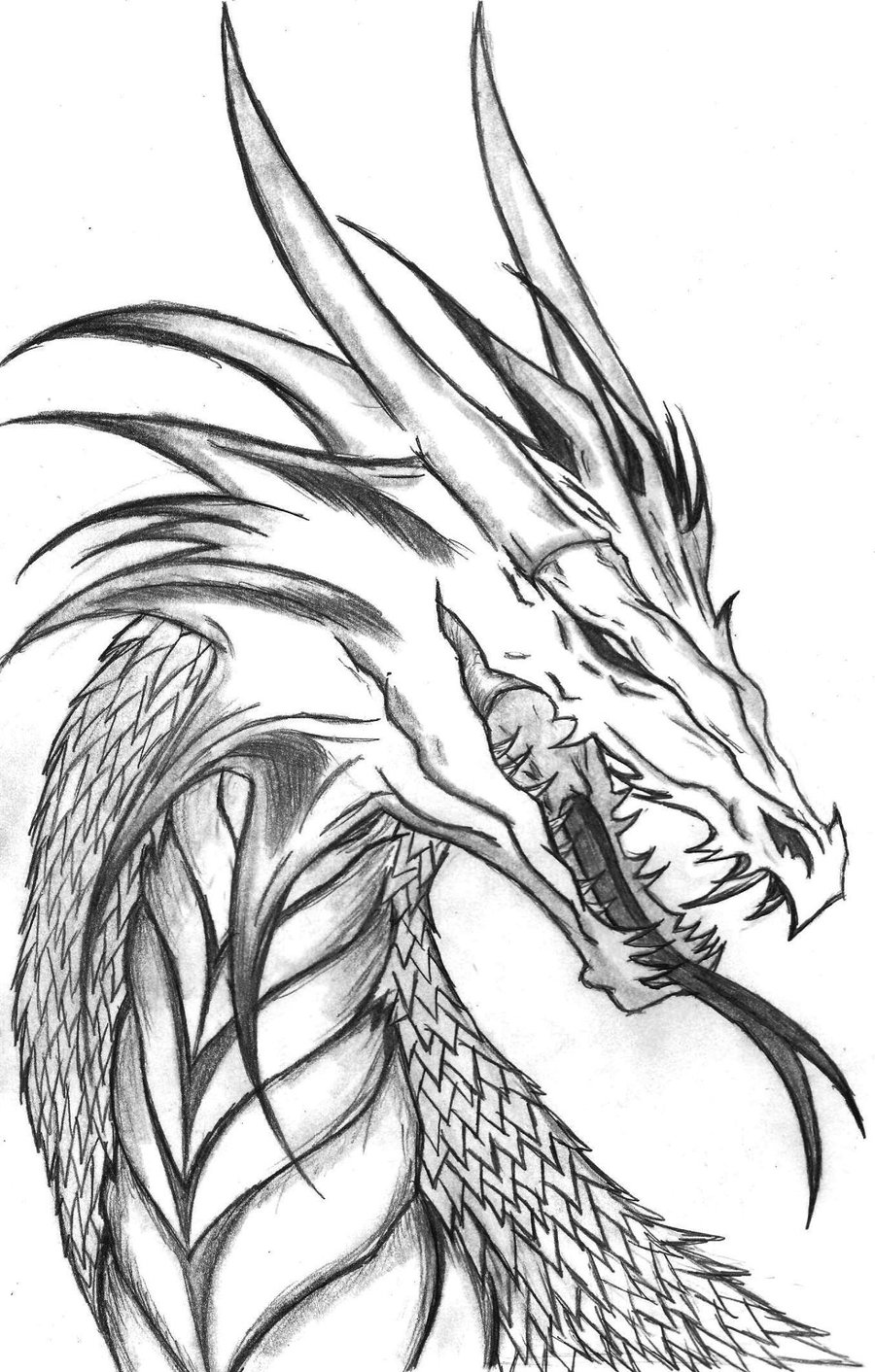 900x1412 Dragon Head Coloring Pages