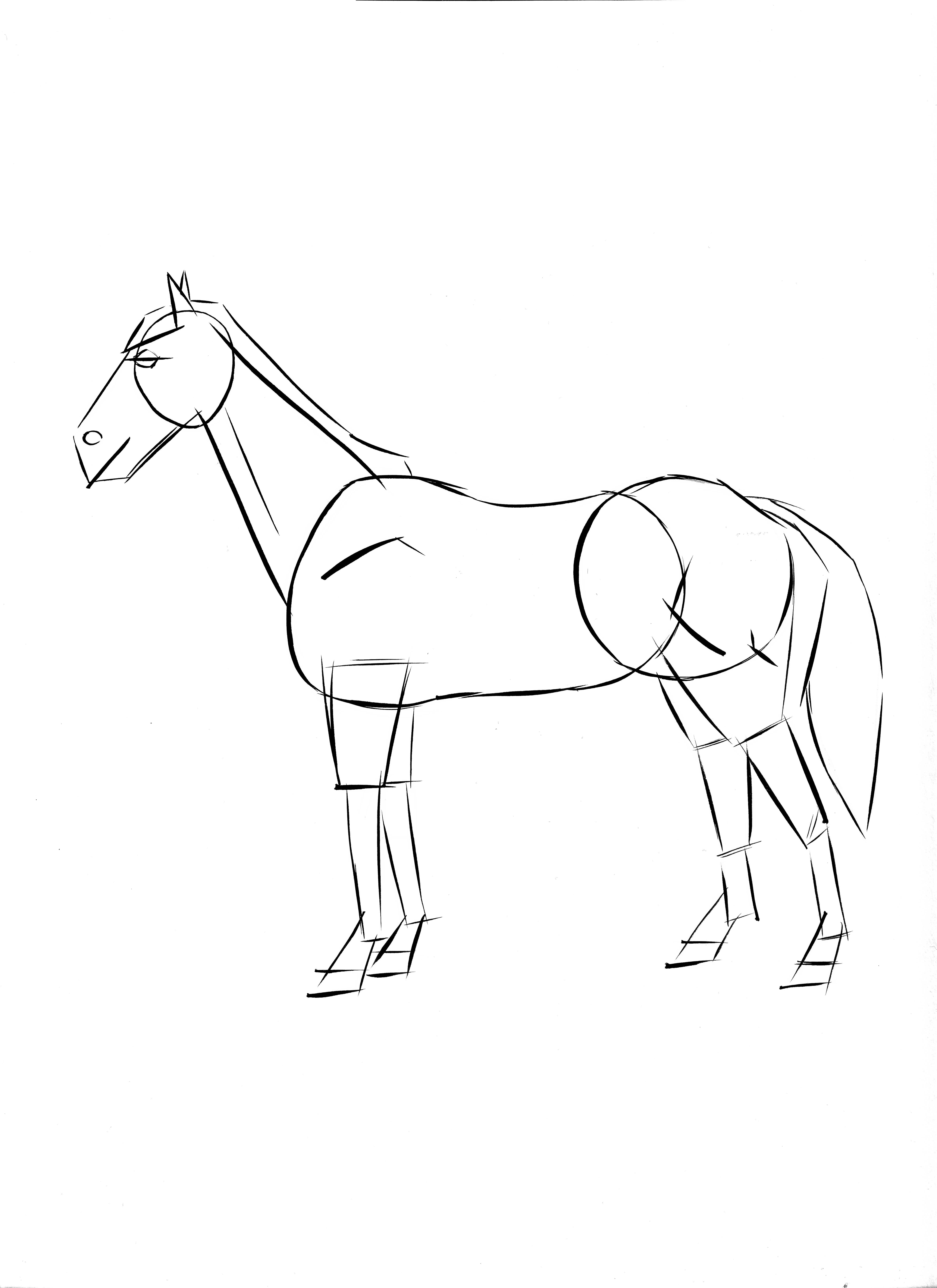 Kids Drawing Horse
