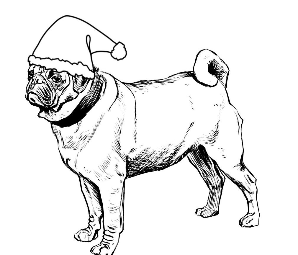 1010x864 Dutch Christmas Coloring Bulldog Pug Page Color Luna Dog Pictures