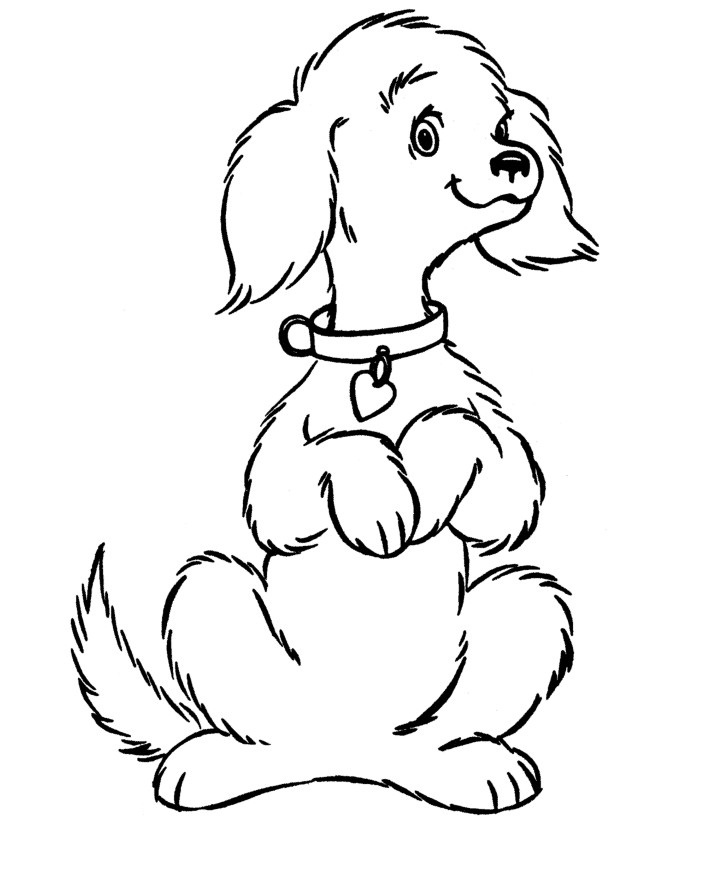 712x875 Free Dog Coloring Pages