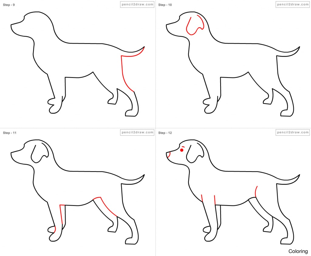 1024x845 How To Draw Dogs Coloring A Dog's Face Eye Ears Diaiz