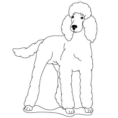 400x400 How To Draw A Poodle Fun Drawing Lessons For Kids Amp Adults Je