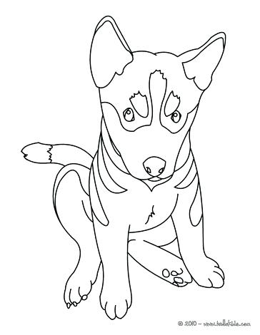 364x470 Coloring Page Of Dog Free Printable Dog Coloring Pages For Kids