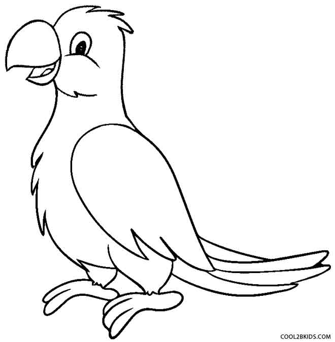 660x675 Printable Parrot Coloring Pages For Kids Cool2bkids