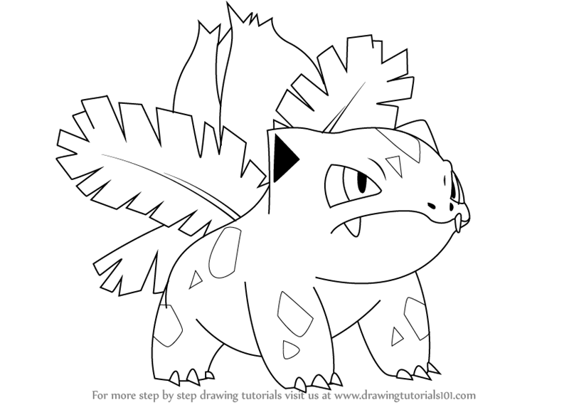 800x569 Learn How To Draw Ivysaur From Pokemon (Pokemon) Step By Step