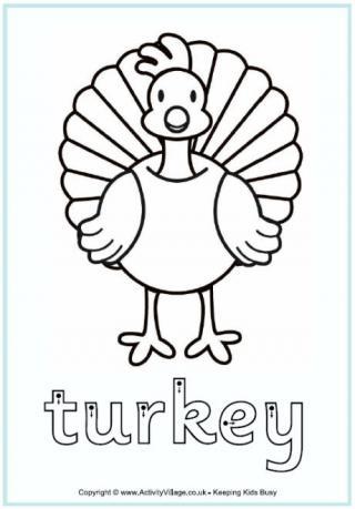 320x459 Turkey Worksheets