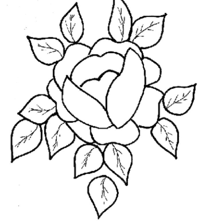 694x769 Flowers Drawings For Kids