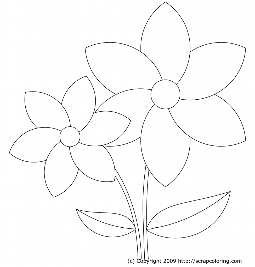 975x1024 How To Draw Beautiful Flowers For Kids How To Draw Hawaiian