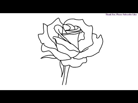 480x360 How To Draw Rose Step By Step Flower Drawing For Kids