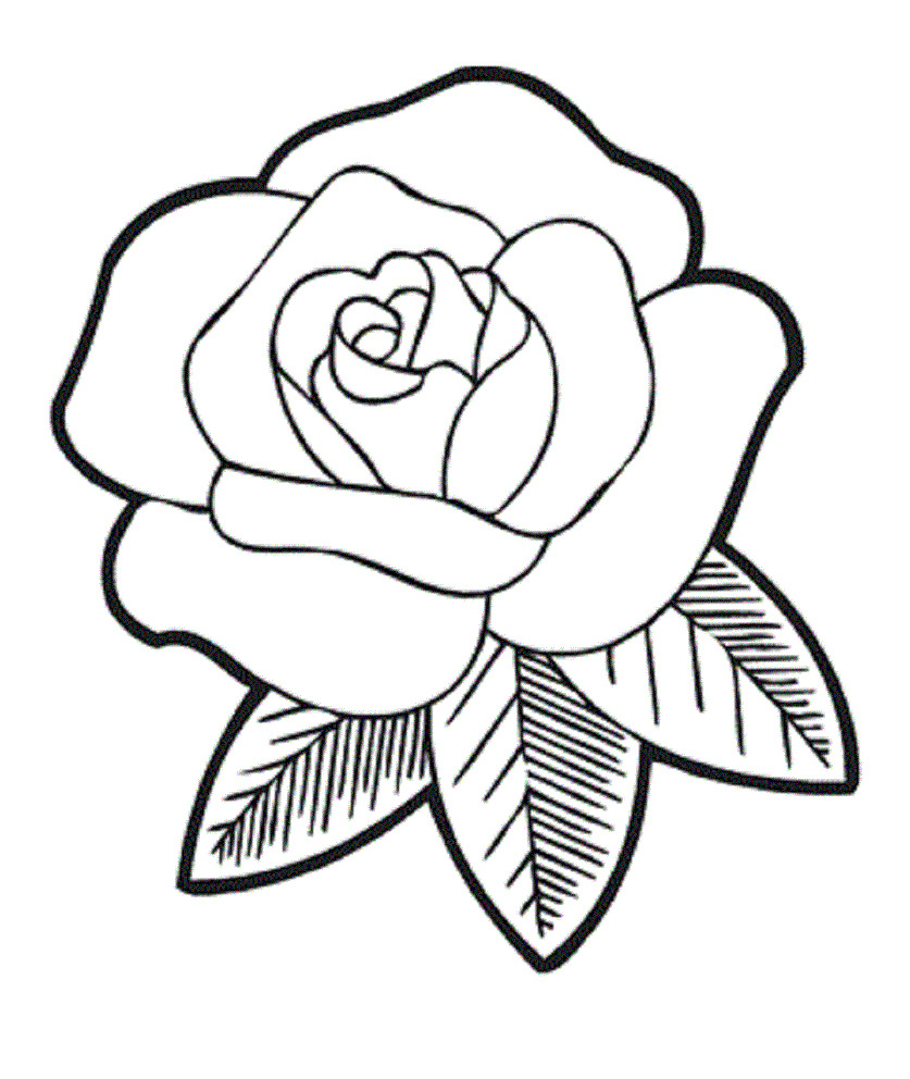 837x992 Rose Flower Drawings For Kids