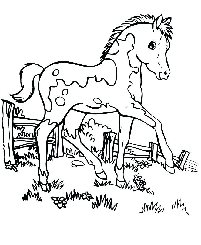 663x806 Free Printable Race Horse Coloring Pages For Kids With Horses