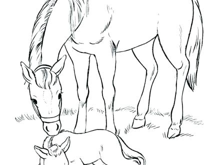440x330 Horse Color Sheet Free Printable Horse Coloring Pages For Kids
