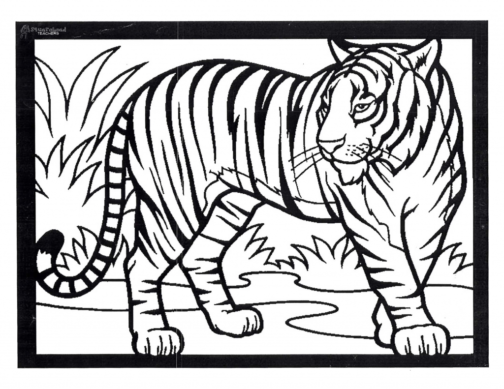 1024x791 Tiger Drawing For Children Tiger Painting For Kids