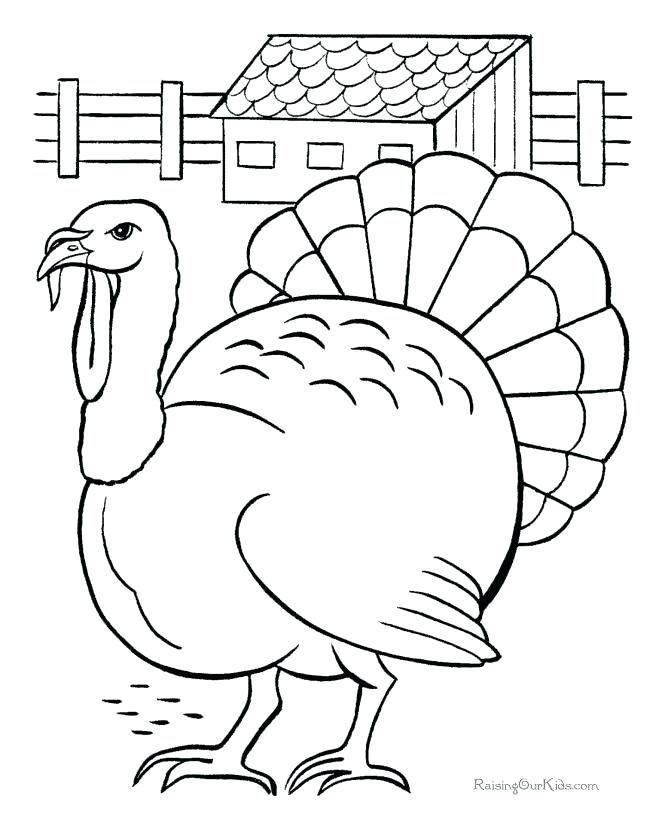 670x820 Coloring Page Of A Turkey Large Print Coloring Pages Turkey