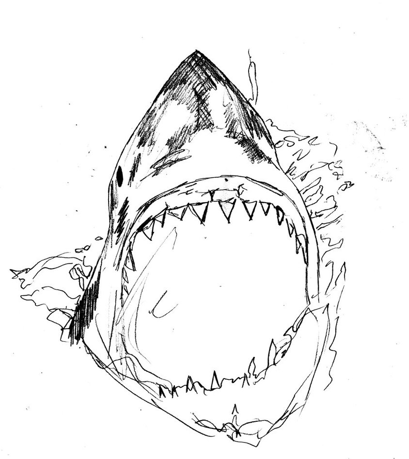 844x947 Killer Shark Drawing By Alexis Wright On Newgrounds