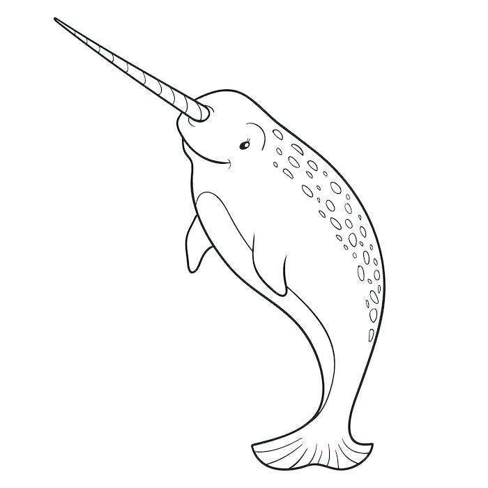 700x700 Ideas Whale Coloring Pages For Killer Whale Coloring Pages Whale