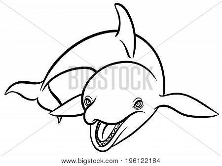450x337 Orca Images, Illustrations, Vectors