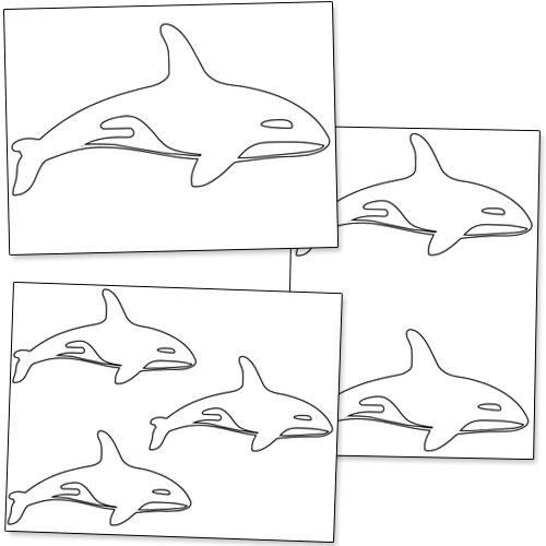 500x500 Printable Killer Whale Shapes Printable