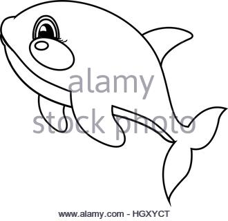 330x320 Cartoon Whale Line Drawing Vector Illustration Stock Vector Art
