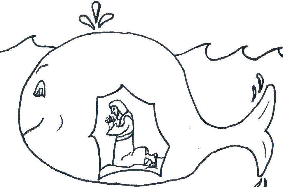 970x642 Whale Color Page Killer Whale Coloring Page Whale Shark Coloring