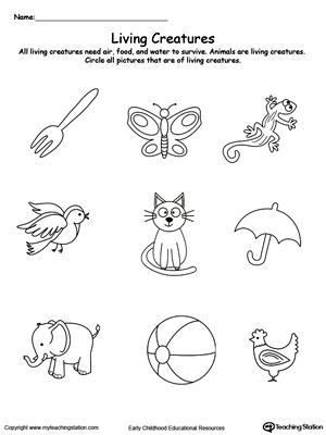 300x400 Kindergarten Printable Worksheets