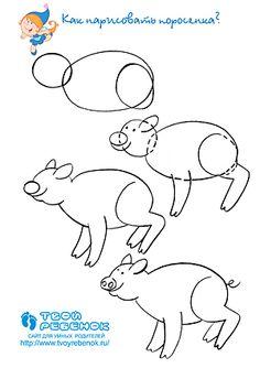 236x334 Zebra Directed Draw How To Draw Kinder Science