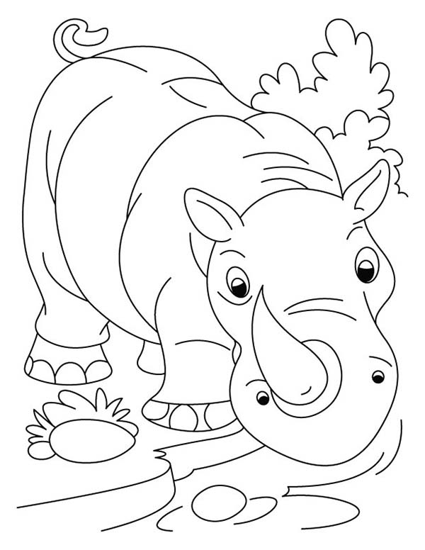 600x776 Kindergarten Kids Drawing Rhino Coloring Pages Batch Coloring