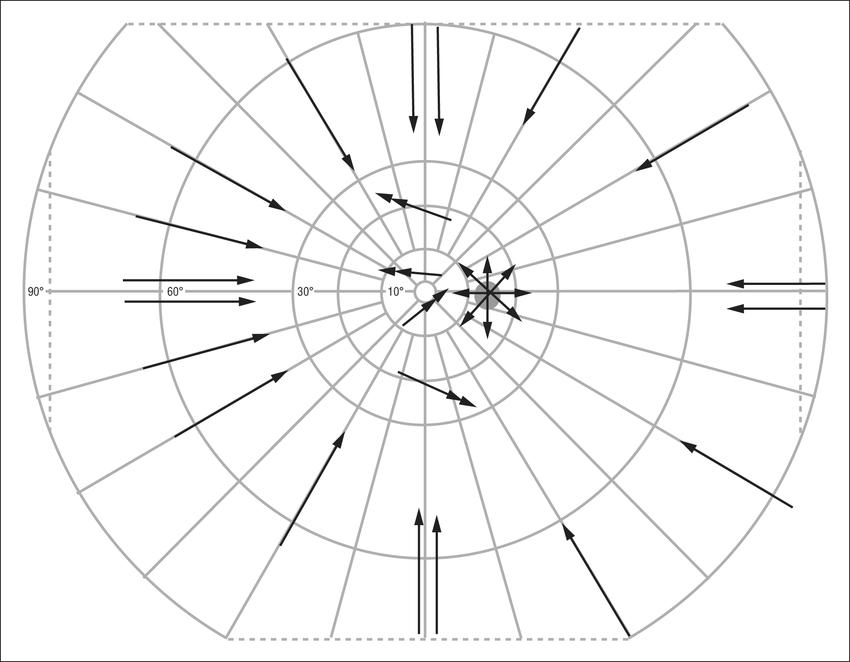 850x662 Stimulus Trajectory In Preprogrammed Kinetic Examination. The I4e