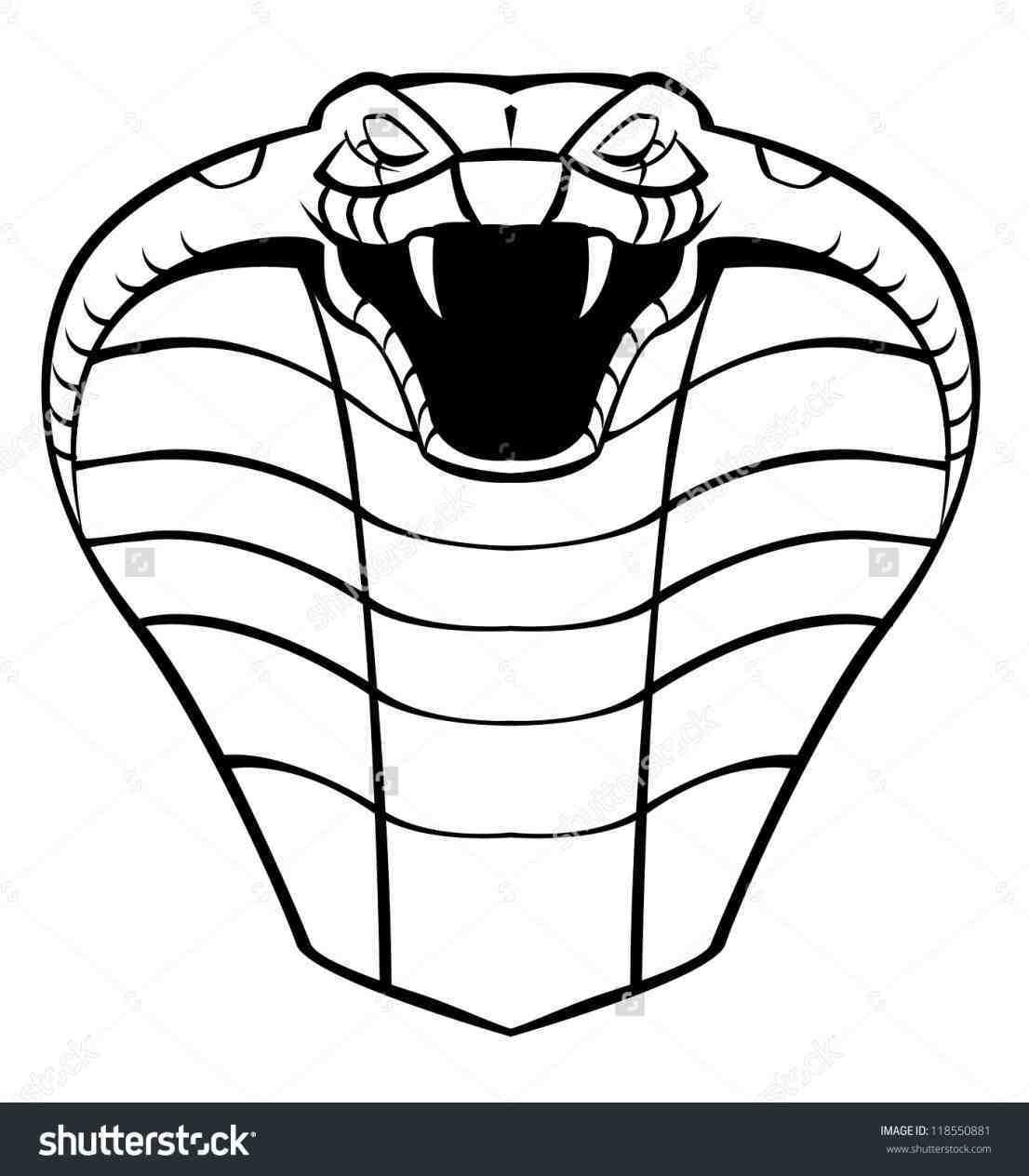 1106x1264 Draw King Cobra