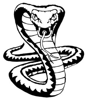 300x345 King Cobra Snake Drawings Cobra Cobra Snake, King