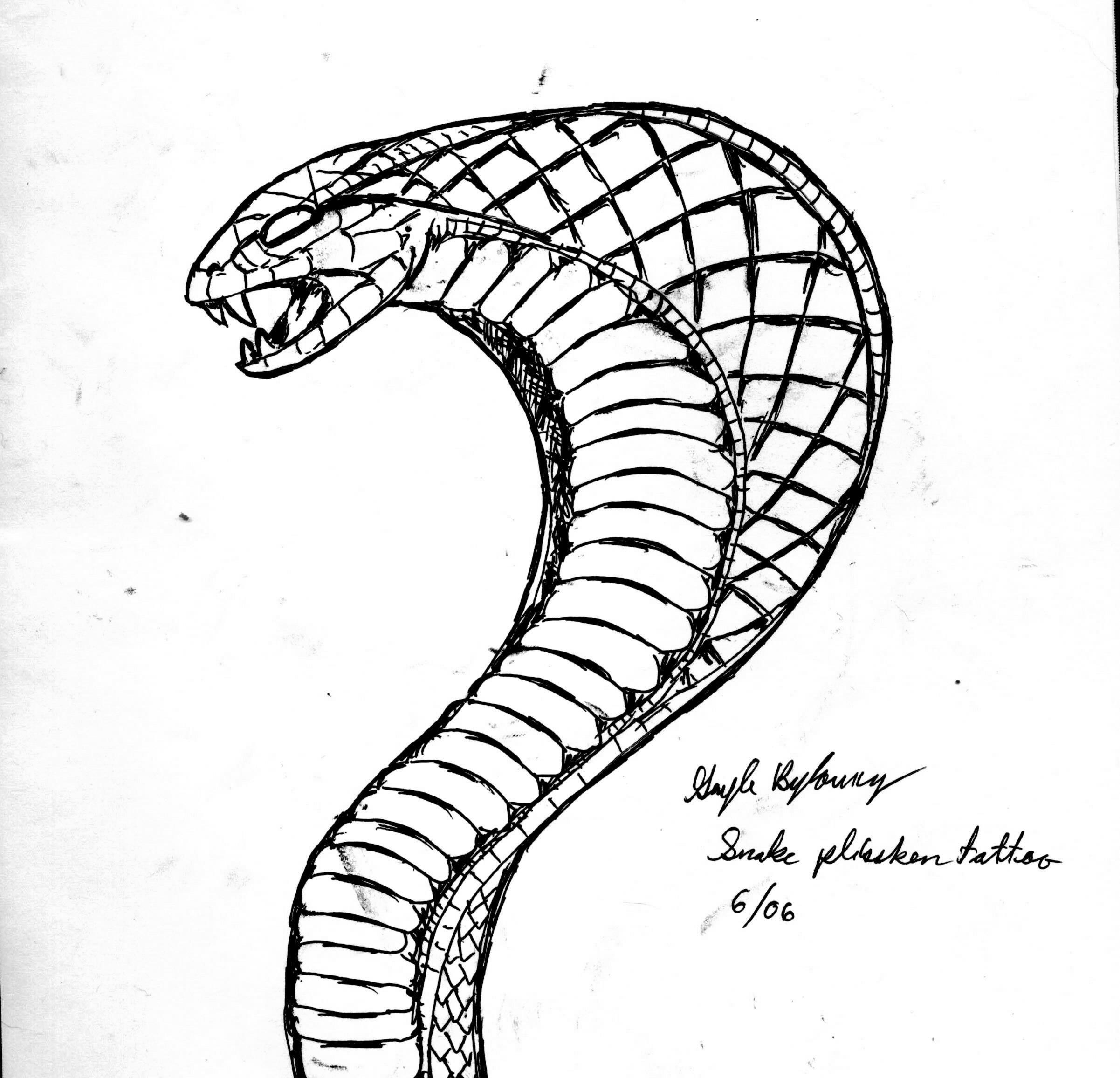 2403x2313 Cobra