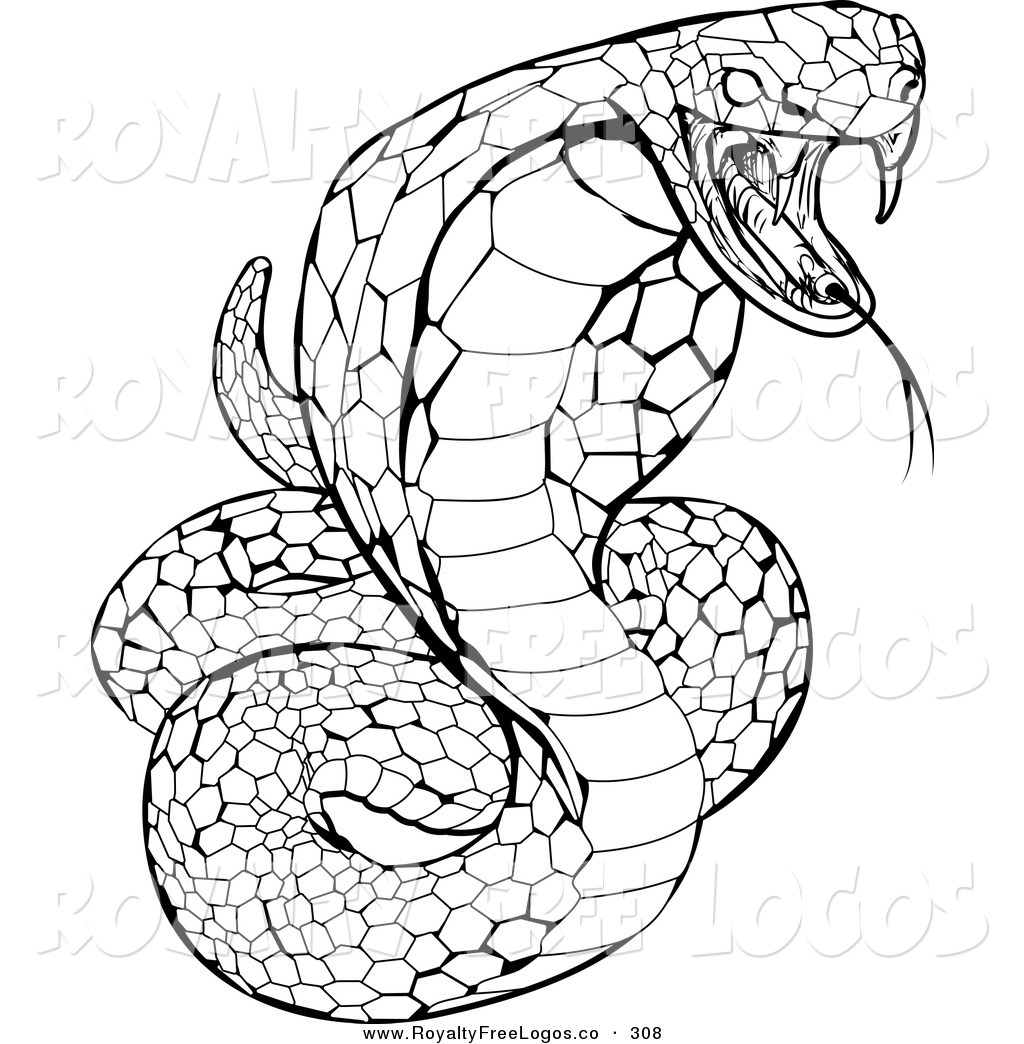 1024x1044 Drawn Cobra Snake Strike