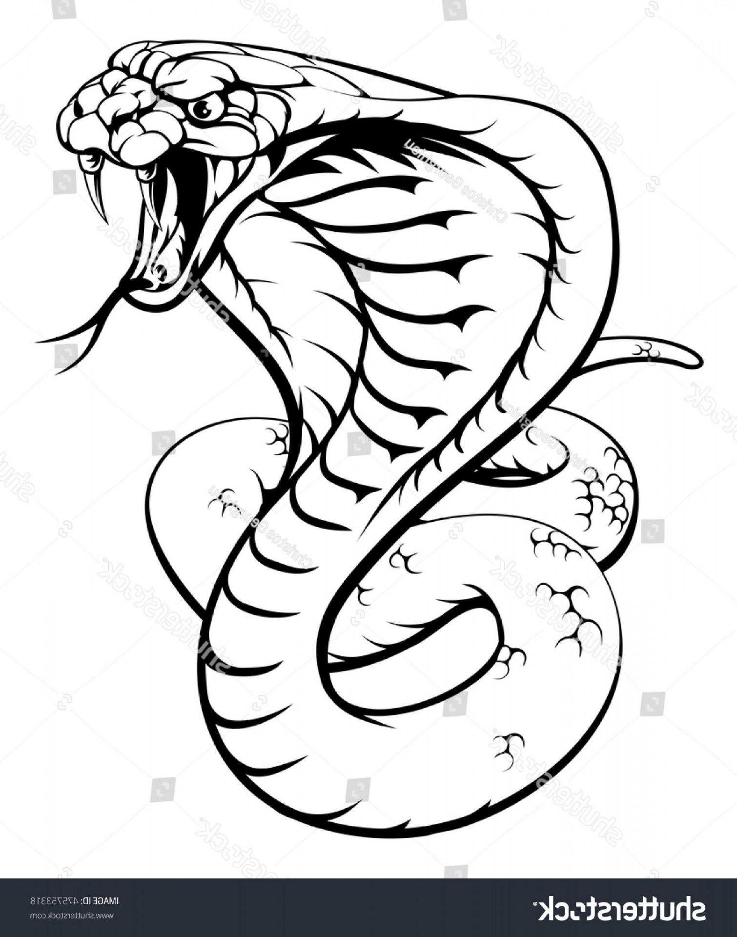 1510x1920 Illustration King Cobra Snake Black White Ardiafm