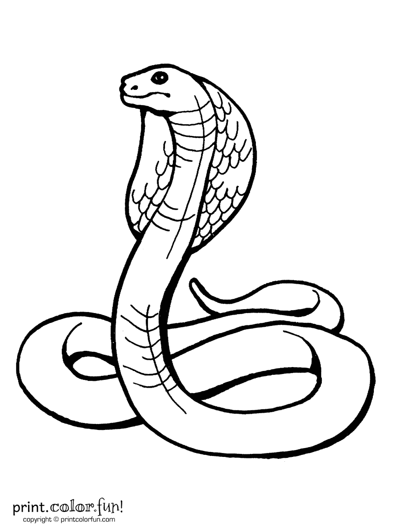800x1080 Indian Design With Three Headed Cobra Coloring Page Free Printable