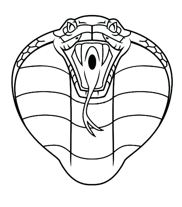 600x680 King Cobra Coloring Pages Coloring Pages King Cobra Kids Colouring