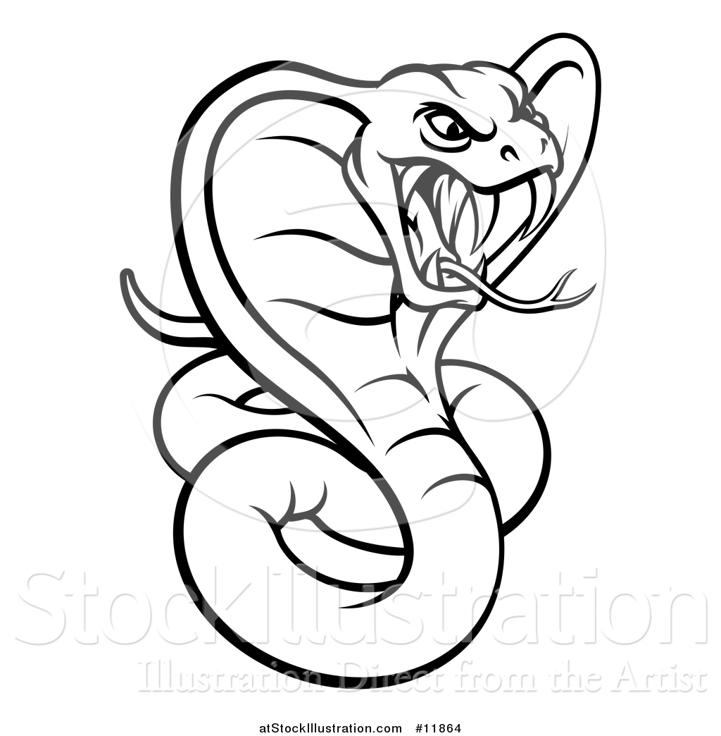 1024x1044 Vector Illustration Of A Black And White Angry Green King Cobra