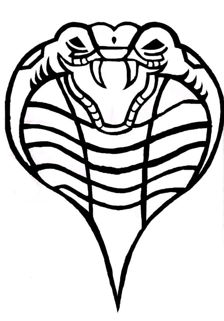 747x1069 King Cobra Vector Illustration By Jacktonaut