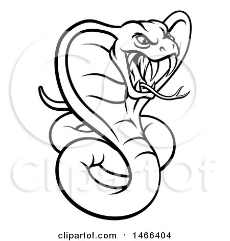 450x470 Clipart Of A Black And White Angry Green King Cobra Snake