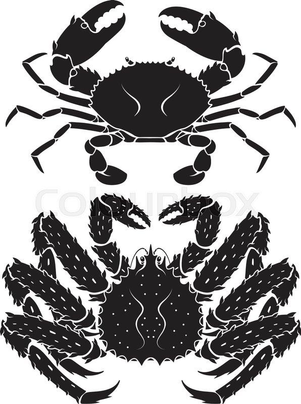 596x800 Alaskan King Crab. Vector Illustrations. Stock Vector Colourbox