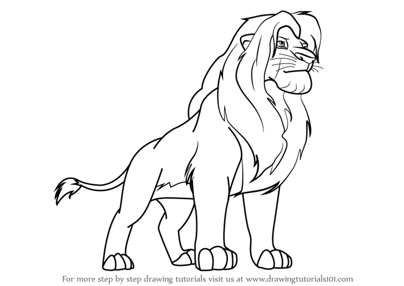 800x566 Learn How To Draw Simba From The Lion King (The Lion King) Step By