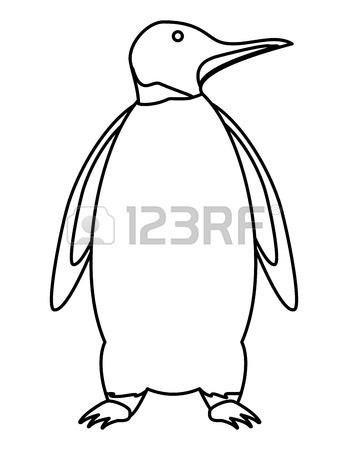 King Penguin Drawing