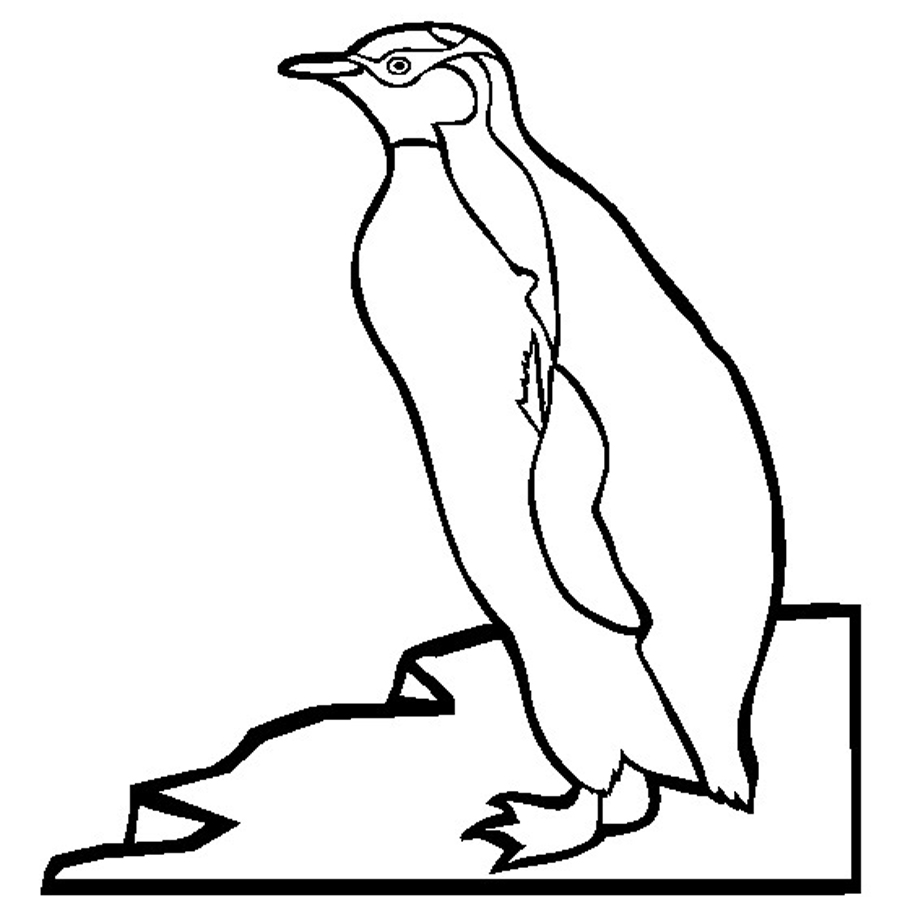 900x918 Printable Penguin Coloring Pages Me