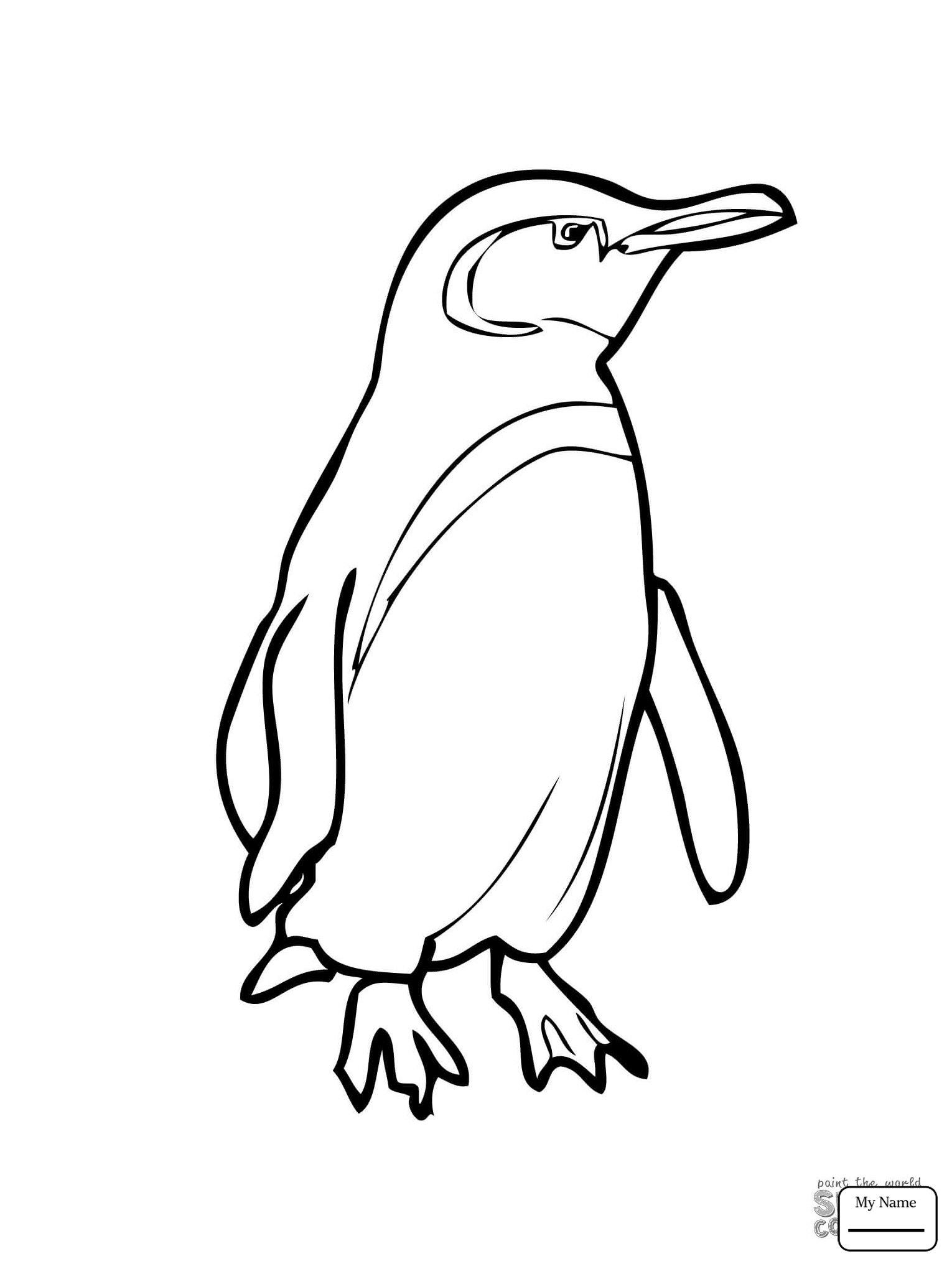 1530x2040 Penguins King Penguin With A Bow Tie Birds Coloring Pages
