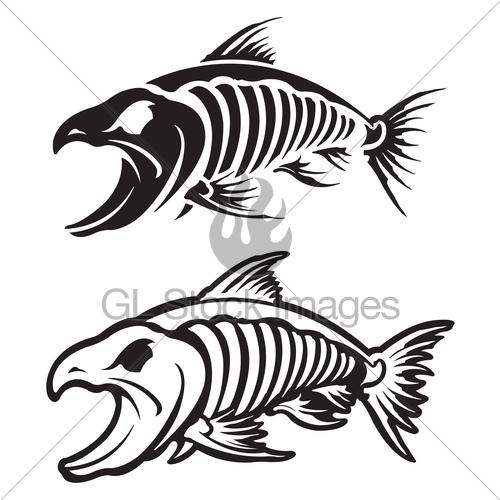 500x500 Pacific Salmon Bone Sceleton Salmon Skeleton Fish Art