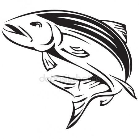 450x450 Atlantic Salmon Stock Vectors, Royalty Free Atlantic Salmon