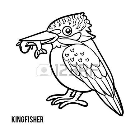 Kingfisher Bird Drawing