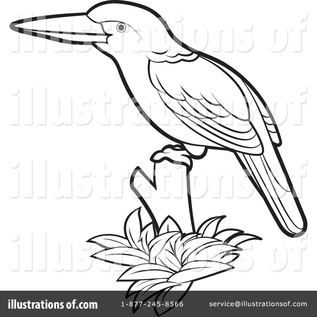 1024x1024 Kingfisher Clipart Black And White